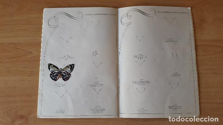 Coleccionismo Álbumes: ÁLBUM cromos LAS CIEN MARIPOSAS MÁS BELLAS DEL MUNDO EN RELIEVE / CON 32 CROMOS PANRICO - ver fotos - Foto 9 - 68985433