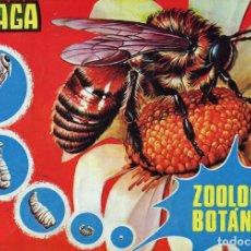 """Coleccionismo Álbumes: ALBUM CROMOS MAGA """"ZOOLOGIA Y BOTANICA"""" - 1969 - (INCOMPLETO). Lote 80225969"""