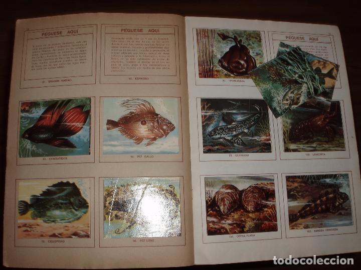 Coleccionismo Álbumes: ALBUM MUNDO SUBMARINO PRODUCCIONES EDITORIALES - Foto 2 - 39662136