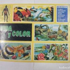 Coleccionismo Álbumes: ALBUM DE CROMOS VIDA Y COLOR. INCOMPLETO. COMICROMO. TDKC29. Lote 97124915