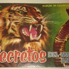 Coleccionismo Álbumes: ÁLBUM SECRETOS DEL MUNDO ANIMAL CASI COMPLETO A FALTA DE SÓLO 2 CROMOS - EDITORIAL ROLLÁN AÑO 1958 -. Lote 101246447