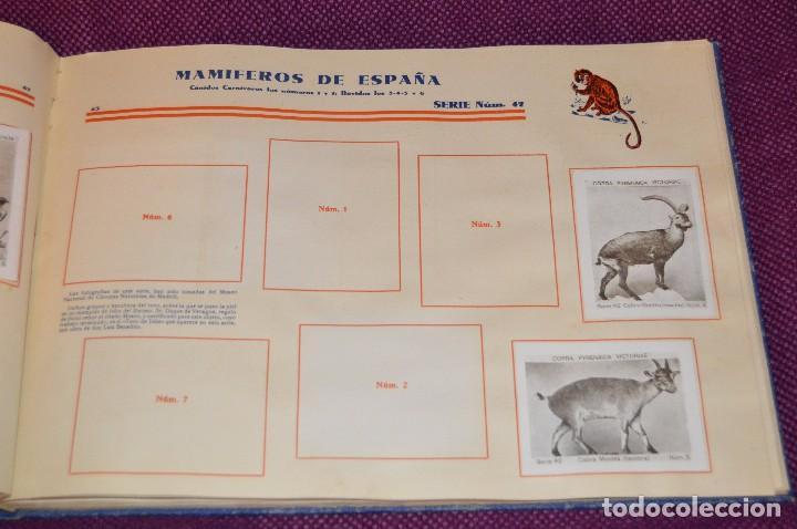 Coleccionismo Álbumes: ANTIGUO 1932 - ALBUM DEL CUPON PENINSULAR - TOMO I - AÑOS 30 - HELIOS - MADE IN SPAIN - Haz oferta - Foto 46 - 103785055