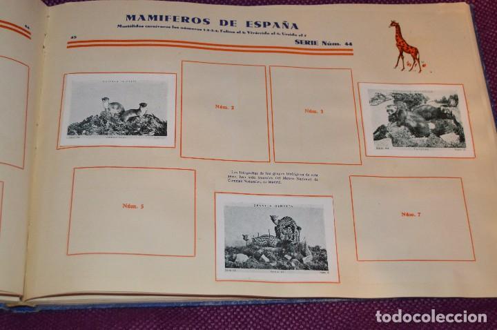 Coleccionismo Álbumes: ANTIGUO 1932 - ALBUM DEL CUPON PENINSULAR - TOMO I - AÑOS 30 - HELIOS - MADE IN SPAIN - Haz oferta - Foto 48 - 103785055
