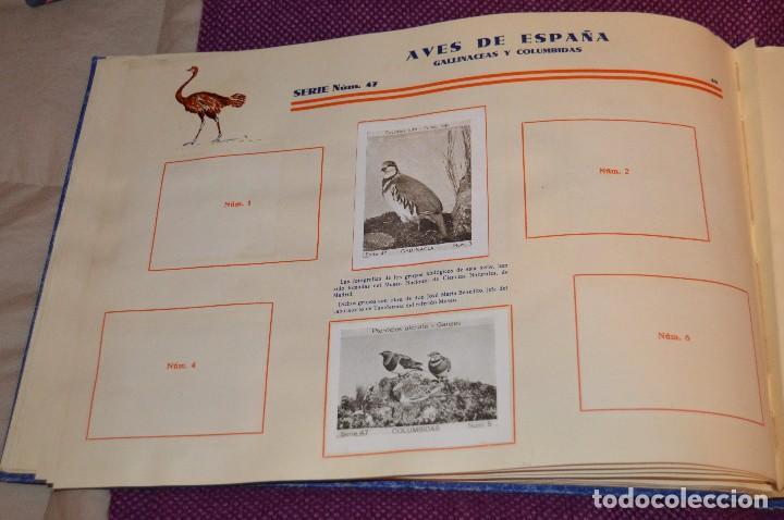 Coleccionismo Álbumes: ANTIGUO 1932 - ALBUM DEL CUPON PENINSULAR - TOMO I - AÑOS 30 - HELIOS - MADE IN SPAIN - Haz oferta - Foto 51 - 103785055