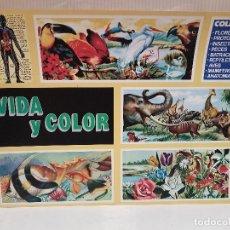 Coleccionismo Álbumes: ANTIGUO ALBUM VIDA Y COLOR PERFECTO ESTADO VACIO VER FOTOS. Lote 208027507