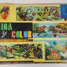 Coleccionismo Álbumes: ÁLBUM DE CROMOS. VIDA Y COLOR. EDIT ÁLBUMES ESPAÑOLES. 1965. INCOMPLETO.. Lote 140718370