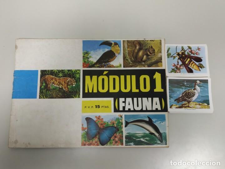 J- ALBUM DE CROMOS OBSEQUIO MODULO 1 FAUNA EDITORIAL VALERO AÑO 1970 INCOMPLETO (Coleccionismo - Cromos y Álbumes - Álbumes Incompletos)