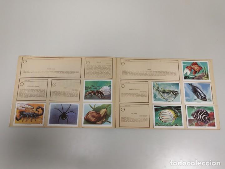 Coleccionismo Álbumes: J- ALBUM DE CROMOS OBSEQUIO MODULO 1 FAUNA EDITORIAL VALERO AÑO 1970 INCOMPLETO - Foto 3 - 144030966