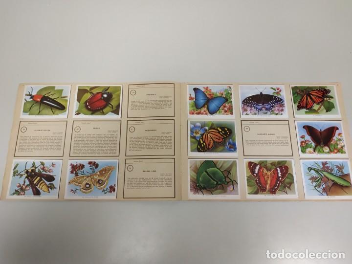 Coleccionismo Álbumes: J- ALBUM DE CROMOS OBSEQUIO MODULO 1 FAUNA EDITORIAL VALERO AÑO 1970 INCOMPLETO - Foto 4 - 144030966