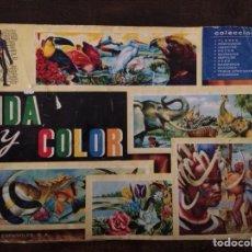 Coleccionismo Álbumes: ÁLBUM VIDA Y COLOR INCOMPLETO. Lote 147368156