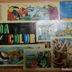Coleccionismo Álbumes: ALBUM VIDA Y COLOR INCOMPLETO - FALTAN 4 CROMOS - EDITORIAL ALBUMES ESPAÑOLES 1965. Lote 149627778