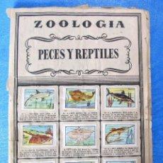 Coleccionismo Álbumes: ZOOLOGÍA. PECES Y REPTILES, MARIPOSAS ANIMALES PREHÍSTORICOS, MAMIFEROS, AVES. EDITORIAL BRUGUERA.. Lote 151008506