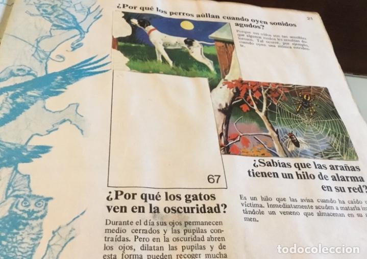 Coleccionismo Álbumes: Álbum el porqué de las cosas número 2 Bimbo - Foto 7 - 164886338