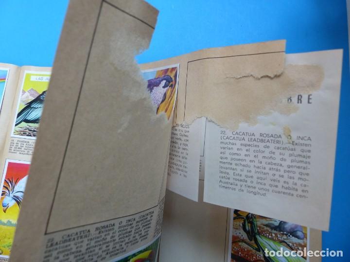Coleccionismo Álbumes: ALBUM CROMOS LA NATURALEZA Y EL HOMBRE - LE FALTAN 34 CROMOS - ED. MAGA - VER DESCRIPCION Y FOTOS - Foto 5 - 166864688