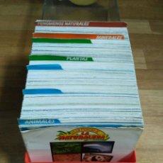 Collectionnisme Albums: - GRAN FICHERO DE LA NATURALEZA FICHAS SARPE 1984. Lote 170862025