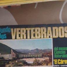 Coleccionismo Álbumes: ALBUM CROMOS EL MUNDO DE LOS VERTEBRADOS ZOOLOGÍA MUSEO CIENCIAS NATURALES EL CARMEN INCOMPLETO. Lote 173456414