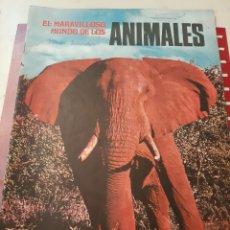 Coleccionismo Álbumes: ANIMALES ÁLBUM CROMOS VACÍO. Lote 176837375