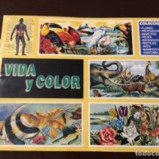 Coleccionismo Álbumes: ANTIGUO ÁLBUM VIDA Y COLOR VACIO. Lote 177219608