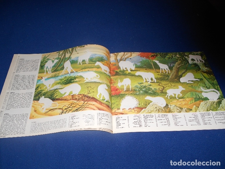 Coleccionismo Álbumes: ÁLBUM LA ZOOLOGÍA EN CASA VACIO PLANCHA - Foto 3 - 178593130