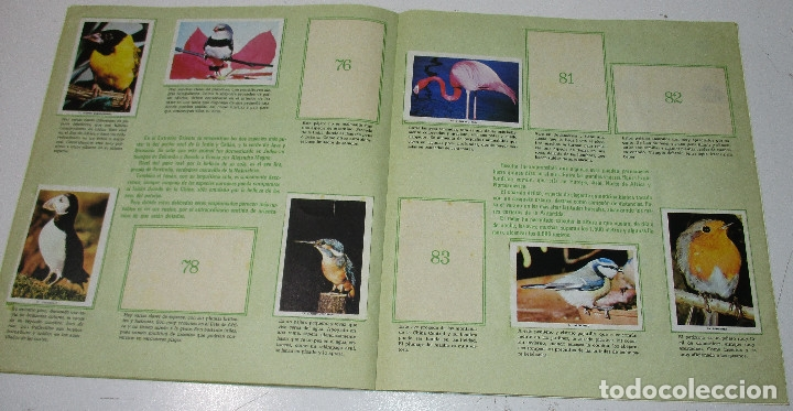 Coleccionismo Álbumes: Album cromos MUNDO ANIMAL 1984, FHER , con 58 cromos de 121 - Foto 3 - 178622253