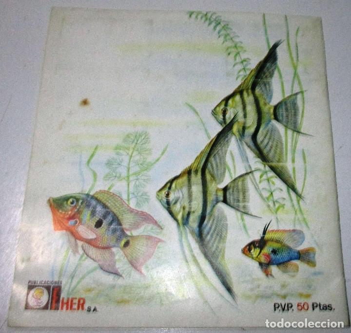 Coleccionismo Álbumes: Album cromos MUNDO ANIMAL 1984, FHER , con 58 cromos de 121 - Foto 4 - 178622253