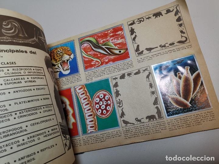 Coleccionismo Álbumes: ÁLBUM CROMOS ZOOLOGIA Y BOTANICA- ÁLBUM MAGA, 1969. INCOMPLETO. - Foto 2 - 178844818