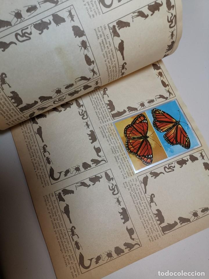 Coleccionismo Álbumes: ÁLBUM CROMOS ZOOLOGIA Y BOTANICA- ÁLBUM MAGA, 1969. INCOMPLETO. - Foto 3 - 178844818