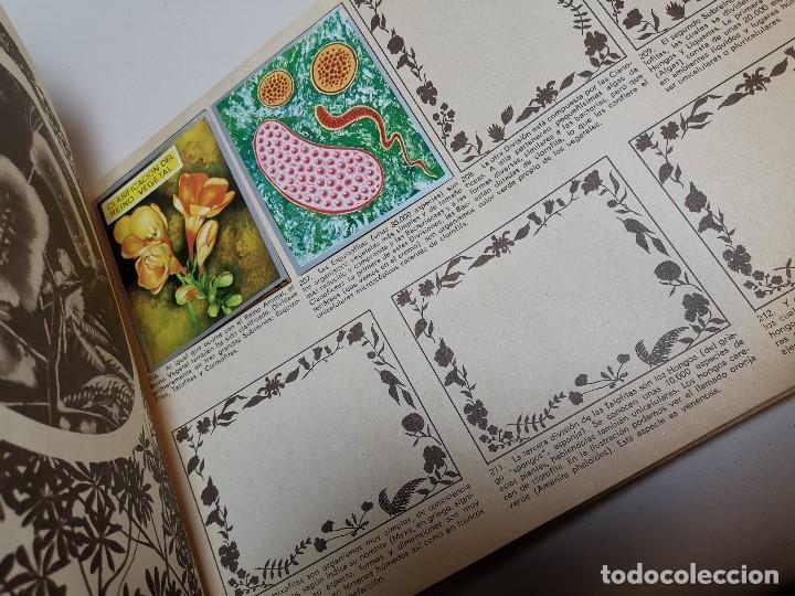 Coleccionismo Álbumes: ÁLBUM CROMOS ZOOLOGIA Y BOTANICA- ÁLBUM MAGA, 1969. INCOMPLETO. - Foto 15 - 178844818