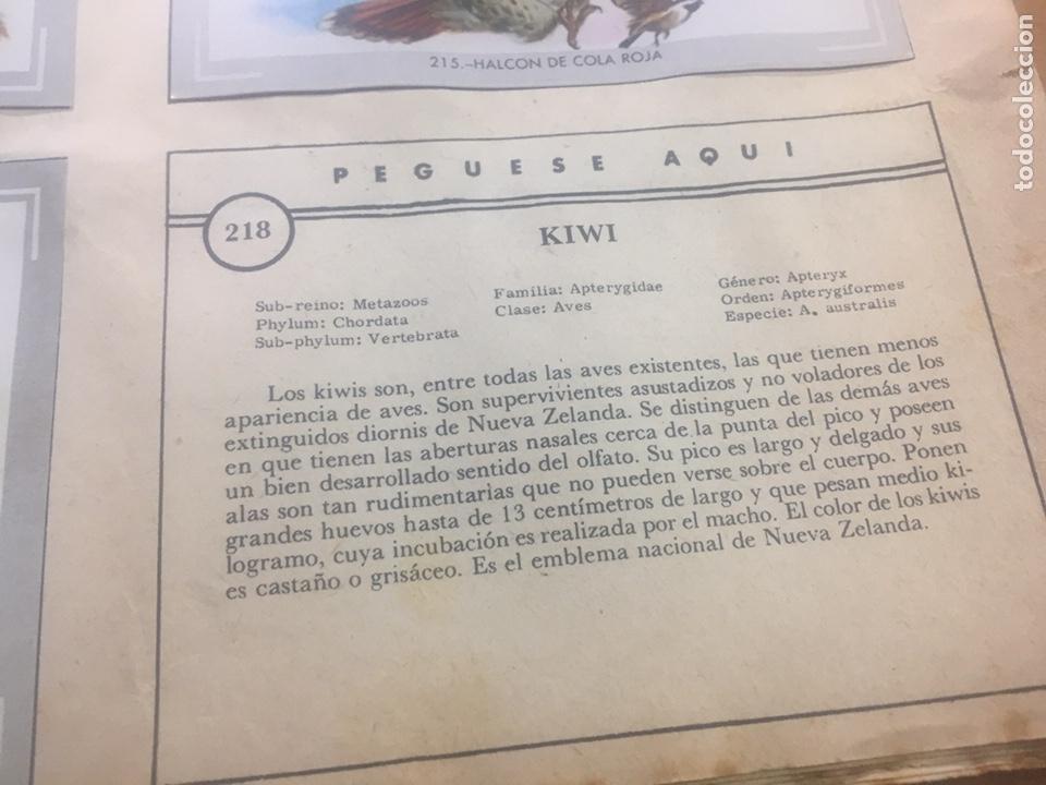Coleccionismo Álbumes: Álbum vida y color (falta el 218) - Foto 5 - 183863497