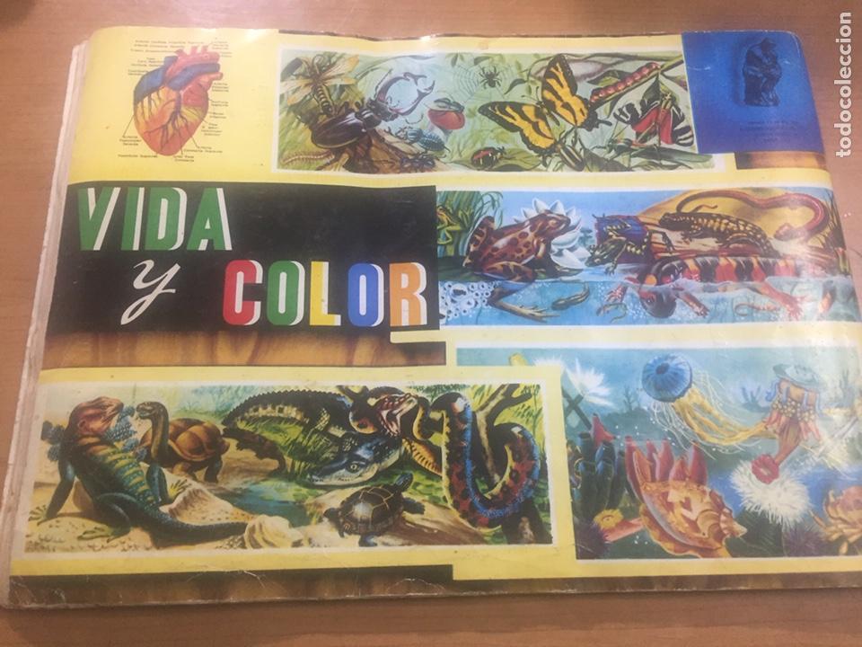 Coleccionismo Álbumes: Álbum vida y color (falta el 218) - Foto 6 - 183863497