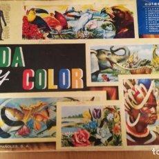 Coleccionismo Álbumes: ÁLBUM VIDA Y COLOR. Lote 186096368