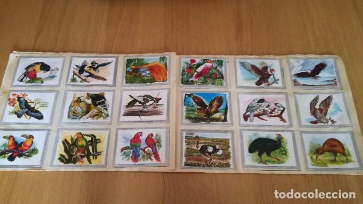 Coleccionismo Álbumes: Álbum Vida y Color - Foto 2 - 186096368