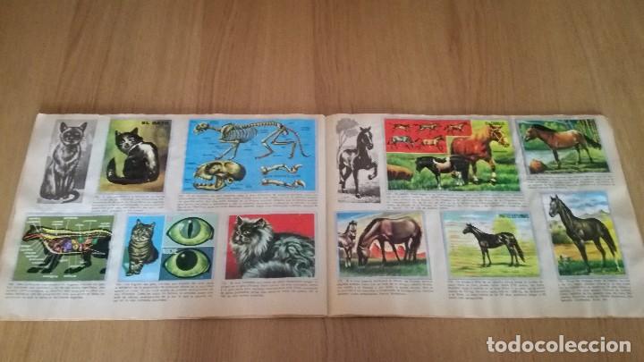 Coleccionismo Álbumes: Álbum Maga Ciencias - Foto 2 - 186100017