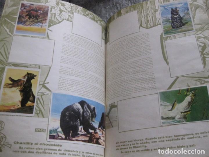 Coleccionismo Álbumes: album de cromos caza mayor . nogueroles ruiz romero 1962 gandia incompleto 62 de 162 - Foto 4 - 194234630