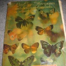 Coleccionismo Álbumes: ALBUM CROMOS LAS CIEN MARIPOSAS MAS BELLAS DEL MUNDO . PANRICO . FALTA SOLO 1 Nº 41 . Lote 194238301