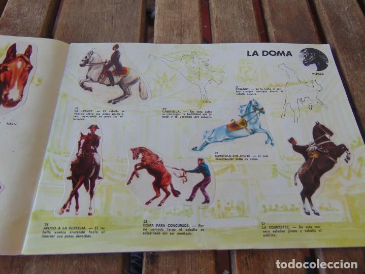 Coleccionismo Álbumes: ÁLBUM DE PANRICO EL MUNDO DE FURIA CABALLOS EN ACCION INCOMPLETO FALTAN 7 CROMOS - Foto 5 - 194341920