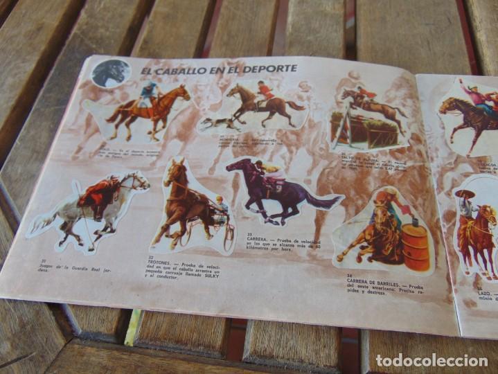 Coleccionismo Álbumes: ÁLBUM DE PANRICO EL MUNDO DE FURIA CABALLOS EN ACCION INCOMPLETO FALTAN 7 CROMOS - Foto 6 - 194341920