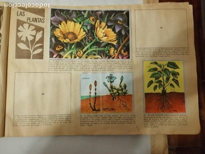 Coleccionismo Álbumes: ÁLBUM EL UNIVERSO Y LA TIERRA. - Foto 12 - 197168636