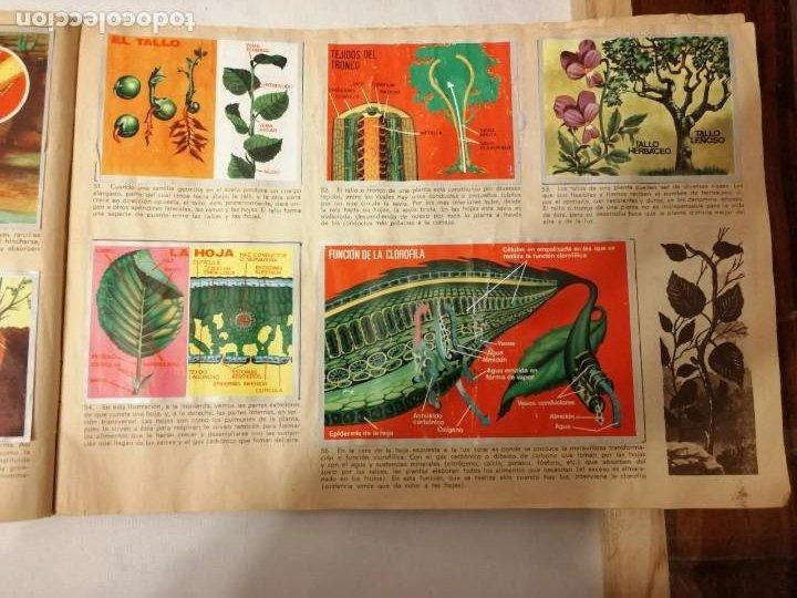 Coleccionismo Álbumes: ÁLBUM EL UNIVERSO Y LA TIERRA. - Foto 15 - 197168636