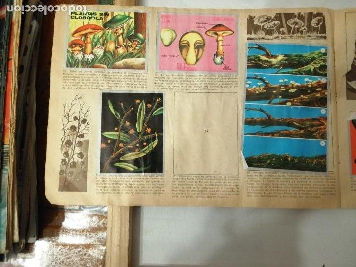 Coleccionismo Álbumes: ÁLBUM EL UNIVERSO Y LA TIERRA. - Foto 16 - 197168636