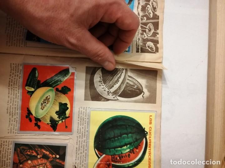 Coleccionismo Álbumes: ÁLBUM EL UNIVERSO Y LA TIERRA. - Foto 18 - 197168636