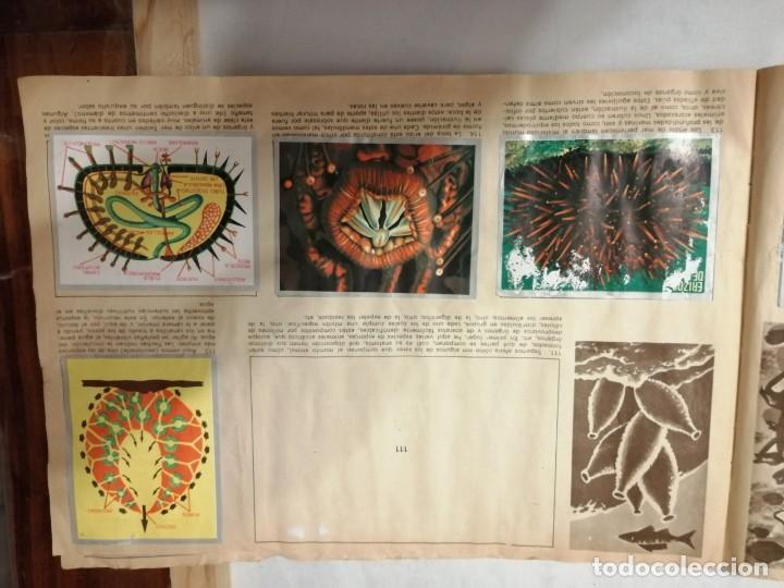 Coleccionismo Álbumes: ÁLBUM EL UNIVERSO Y LA TIERRA. - Foto 23 - 197168636