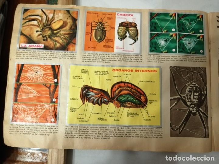 Coleccionismo Álbumes: ÁLBUM EL UNIVERSO Y LA TIERRA. - Foto 24 - 197168636