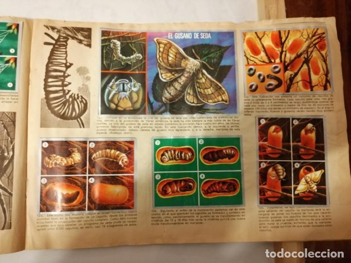 Coleccionismo Álbumes: ÁLBUM EL UNIVERSO Y LA TIERRA. - Foto 25 - 197168636