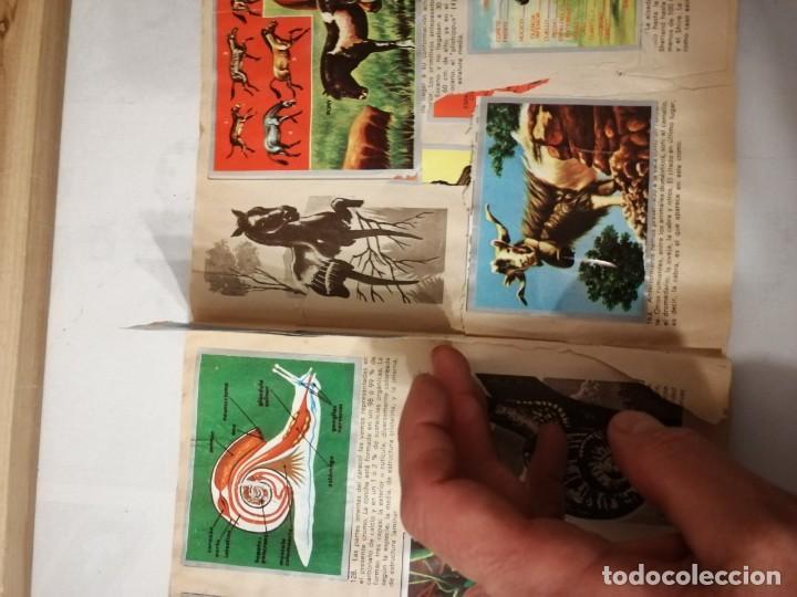 Coleccionismo Álbumes: ÁLBUM EL UNIVERSO Y LA TIERRA. - Foto 27 - 197168636