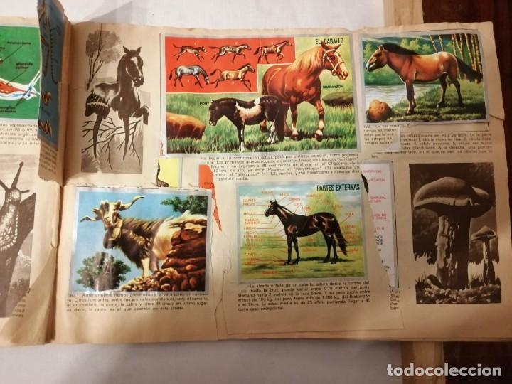 Coleccionismo Álbumes: ÁLBUM EL UNIVERSO Y LA TIERRA. - Foto 28 - 197168636