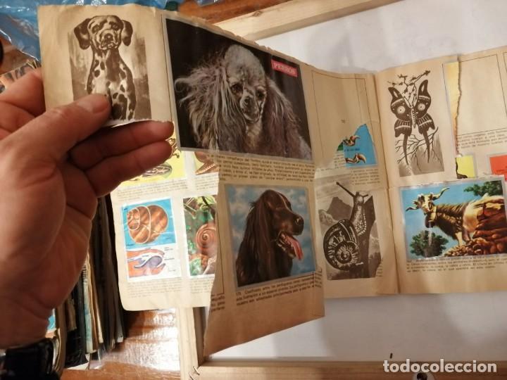 Coleccionismo Álbumes: ÁLBUM EL UNIVERSO Y LA TIERRA. - Foto 29 - 197168636