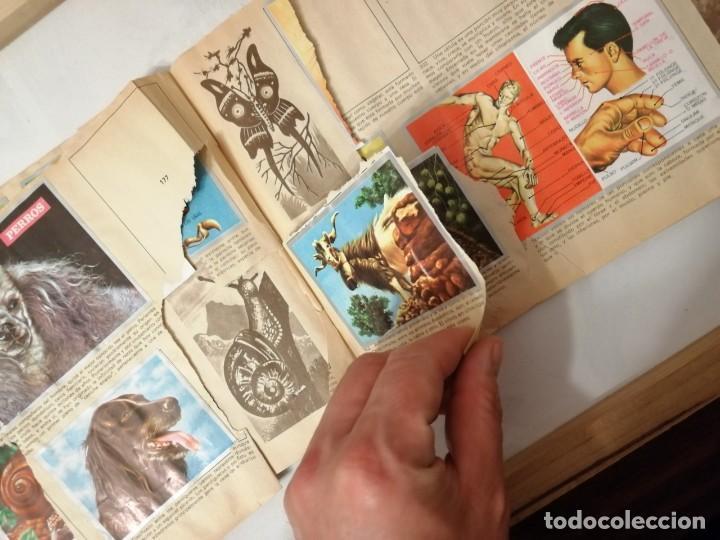 Coleccionismo Álbumes: ÁLBUM EL UNIVERSO Y LA TIERRA. - Foto 30 - 197168636