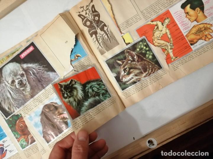 Coleccionismo Álbumes: ÁLBUM EL UNIVERSO Y LA TIERRA. - Foto 31 - 197168636