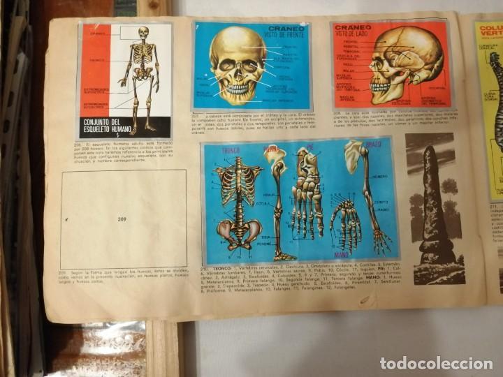 Coleccionismo Álbumes: ÁLBUM EL UNIVERSO Y LA TIERRA. - Foto 35 - 197168636